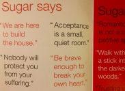 DearSugar2